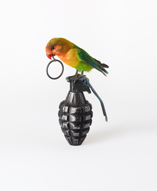 Nancy Fouts, Lovebird with Grenade, 2012 (c) Nancy Fouts, Courtesy of Flowers Gallery