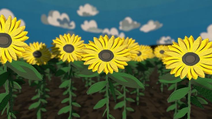 Sunflower-main-Camera_Screenshot-2018-01-29-15-18-34-1920x1080x1